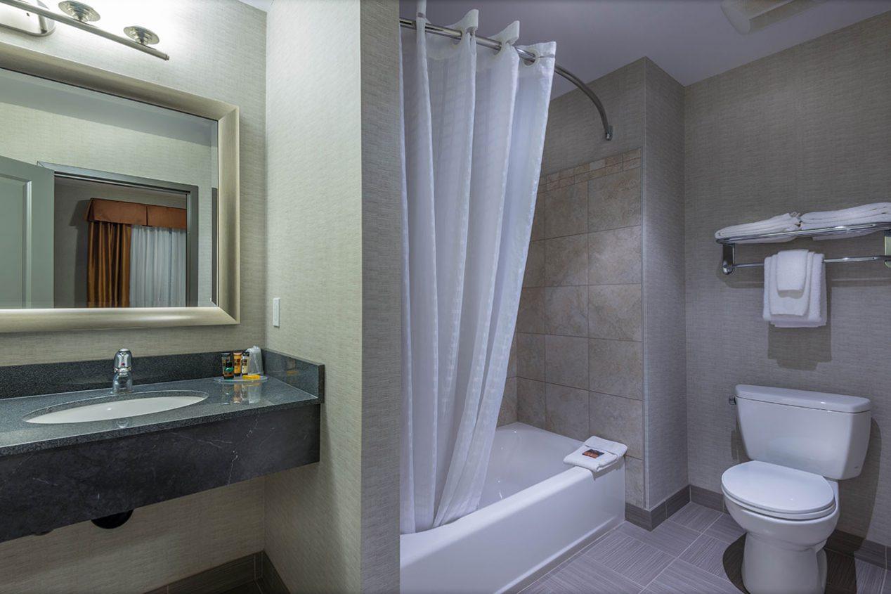 Executive-Suite-Washroom